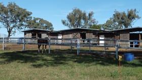 Rural / Farming commercial property for sale at 207 Jonel Park Road Allora QLD 4362