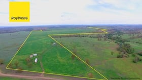 Rural / Farming commercial property for sale at Warialda NSW 2402