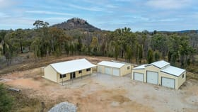 Rural / Farming commercial property for sale at Mudgee NSW 2850