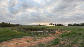 Rural / Farming commercial property for sale at 425 Eadine Road Clackline WA 6564