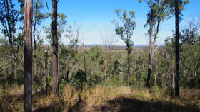 Rural / Farming commercial property for sale at LOT 39 NIELSONS ROAD Good Night QLD 4671