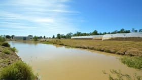 Rural / Farming commercial property for sale at 19 Redwood Dive Brightview QLD 4311