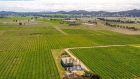 Rural / Farming commercial property for sale at 72 & 74 McDonalds Road Mudgee NSW 2850