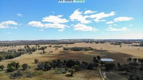Rural / Farming commercial property for sale at Lot 156 Yetman Road Inverell NSW 2360