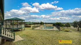 Rural / Farming commercial property for sale at 173 Lowes Peak Road Mudgee NSW 2850