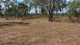 Rural / Farming commercial property for sale at 501 Leonino Road Fly Creek NT 0822