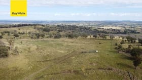 Rural / Farming commercial property for sale at 2520 Elsmore Road Inverell NSW 2360