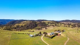Rural / Farming commercial property for sale at Contact Agent Wombeyan Caves Road Bullio NSW 2575