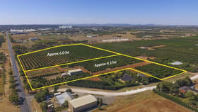 Rural / Farming commercial property for sale at Part 467 Pedley Road Griffith NSW 2680