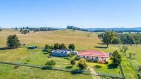 Rural / Farming commercial property for sale at 2079 Kangaroo Flat Rd Walcha NSW 2354