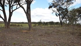 Rural / Farming commercial property for sale at 633 Hanging Rock  Road Paddys River NSW 2577
