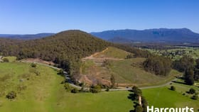 Rural / Farming commercial property for sale at 550 Liena Road Mole Creek TAS 7304