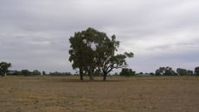 Rural / Farming commercial property for sale at 340 Mitchell Road Echuca Village VIC 3564