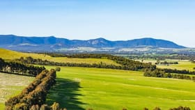 Rural / Farming commercial property for sale at 866 Challicum Road Buangor VIC 3375