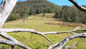 Rural / Farming commercial property for sale at Lot 6 Blue Bonnet Road Lambs Valley NSW 2335
