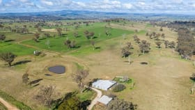 Rural / Farming commercial property for sale at 606 Peabody Road Molong NSW 2866