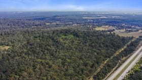 Rural / Farming commercial property for sale at Lot 100 Camp Road Greta NSW 2334