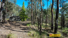 Rural / Farming commercial property for sale at 156 Triangle Swamp Road Mudgee NSW 2850