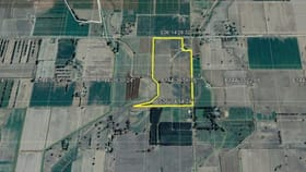 Rural / Farming commercial property for sale at 00 Bamawm Road Bamawm VIC 3561