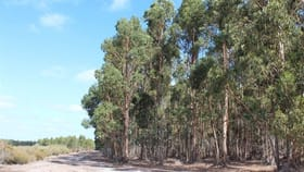 Rural / Farming commercial property for sale at Boyup Brook WA 6244