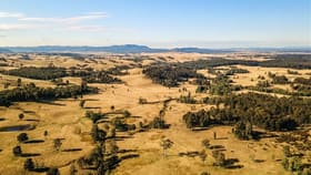 Rural / Farming commercial property for sale at 850 Dyrring Road Singleton NSW 2330