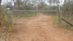 Rural / Farming commercial property for sale at 970 Timor-Bromley Road Bet Bet VIC 3472