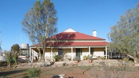 Rural / Farming commercial property for sale at 2014 Parnaroo Road   'Old Parnaroo Station' Peterborough SA 5422