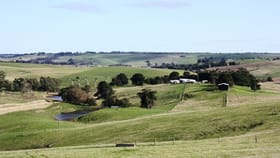 Rural / Farming commercial property for sale at 63 Talisker School Road Merino VIC 3310