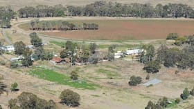 Rural / Farming commercial property for sale at Meringandan West QLD 4352