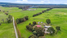 Rural / Farming commercial property for sale at 79 Stringy Bark Road Burrungule SA 5291