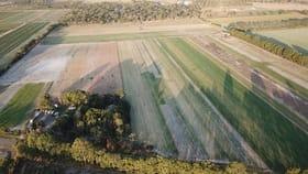 Rural / Farming commercial property for sale at 32 Tarrants Road Calavos QLD 4670