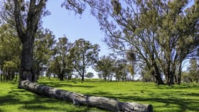 Rural / Farming commercial property for sale at 230 Blue Range Road Mansfield VIC 3722