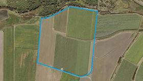 Rural / Farming commercial property for sale at 109 Schrank Road Airdmillan QLD 4807