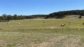 Rural / Farming commercial property for sale at 974 Jerrara Road Marulan NSW 2579