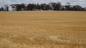 Rural / Farming commercial property for sale at 20121 Great Southern Highway Highbury WA 6313