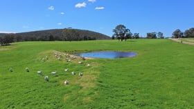 Rural / Farming commercial property for sale at 360 Bulls Pit Road Marulan NSW 2579