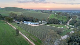 Rural / Farming commercial property for sale at 277 Tweedies Gully Road Williamstown SA 5351