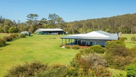 Rural / Farming commercial property for sale at 302 Clarefield Dungay Creek Rd Marlo Merrican NSW 2441