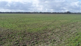 Rural / Farming commercial property sold at 160 McKenzies Road Horsham VIC 3400