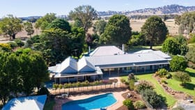 Rural / Farming commercial property for sale at Mayfield 3859 Riverina Highway Albury NSW 2640