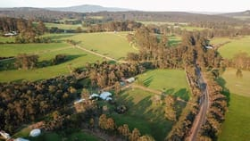 Rural / Farming commercial property for sale at 1670 Scotsdale Road Denmark WA 6333