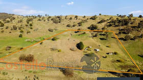 Rural / Farming commercial property for sale at 9272 Murray River Road Walwa VIC 3709