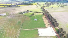 Rural / Farming commercial property for sale at 173 WESTCOURT ROAD Kojonup WA 6395