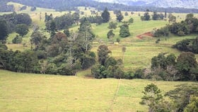 Rural / Farming commercial property for sale at 905 Old Palmerston Hwy Middlebrook QLD 4886