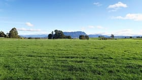 Rural / Farming commercial property for sale at 191-327 NOOK ROAD Sheffield TAS 7306