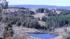 Rural / Farming commercial property sold at Lot 38 South Forest Way Kindervale Braidwood NSW 2622