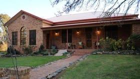 Rural / Farming commercial property for sale at 181 Tumbarumba Road Tumbarumba NSW 2653