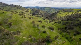 Rural / Farming commercial property for sale at 1989 Nanangroe Road Adjungbilly NSW 2727