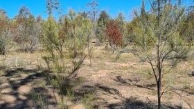 Rural / Farming commercial property sold at Parcel 14 Weranga North Road Tara QLD 4421