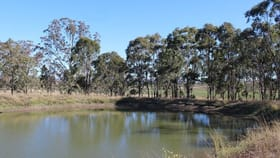 Rural / Farming commercial property for sale at Lot/14 Armbruster Road Junabee QLD 4370